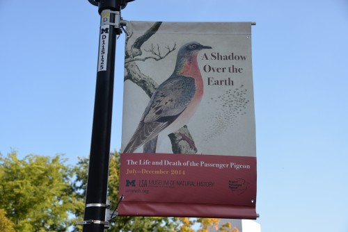 Banner outside U of Michigan Museum of Natural History.