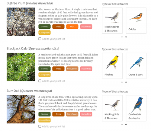 Audubon native plant database search results.