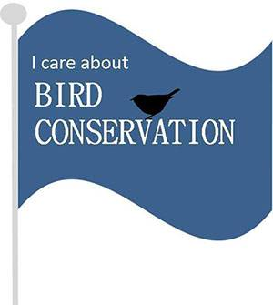 b2ap3_thumbnail_I-Care-About-Bird-Conservation-2014.jpg