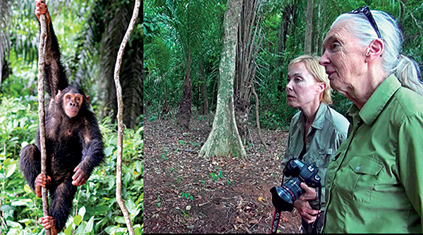 Becci Crowe and Jane Goodall