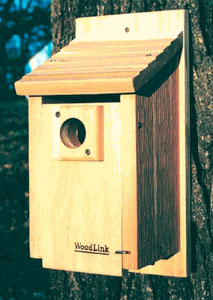Styles of bluebird boxes for Bird house styles