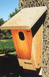 Styles of Bluebird Boxes