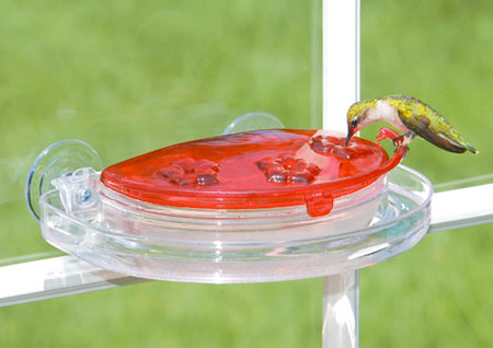 window-mounted hummingbird feeder